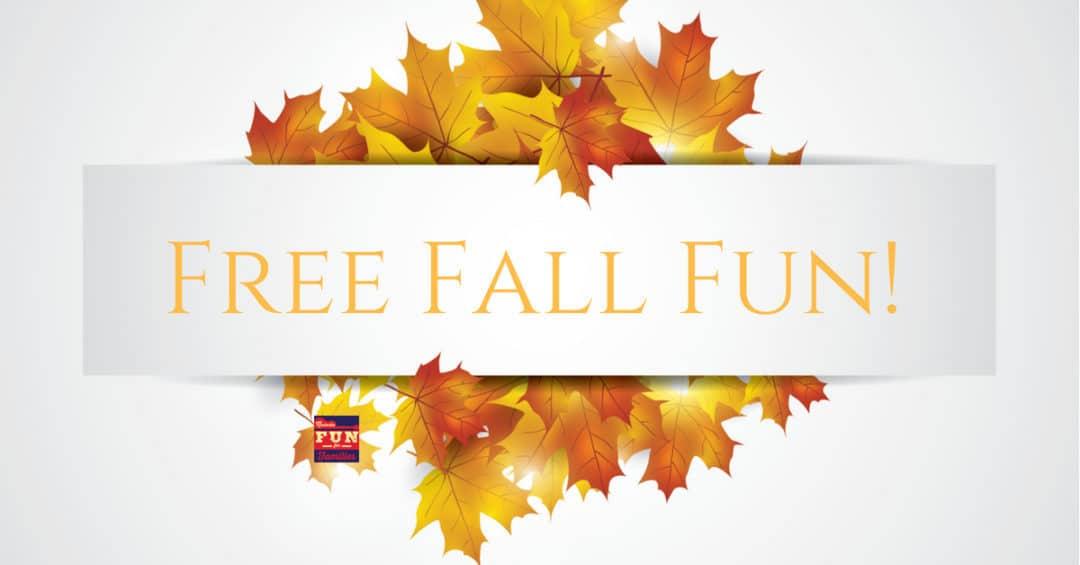 Free Fall Fun