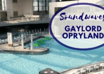 Soundwaves:  Escape at Gaylord Opryland's Water Park Resort