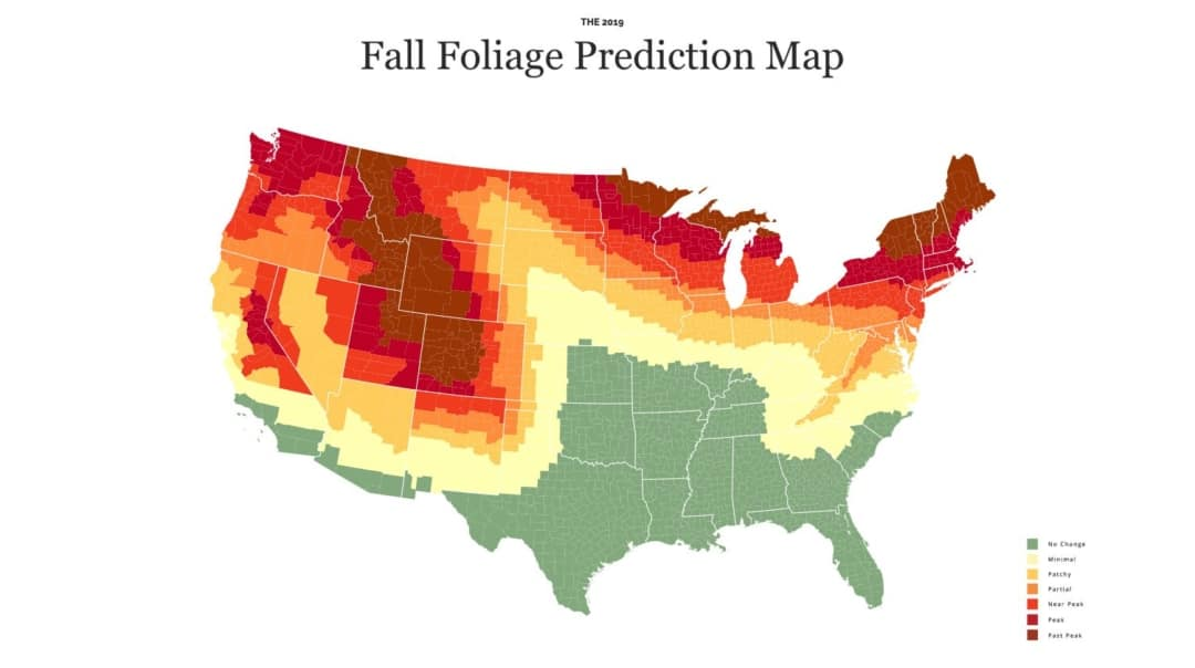 2019 Fall Foliage Map