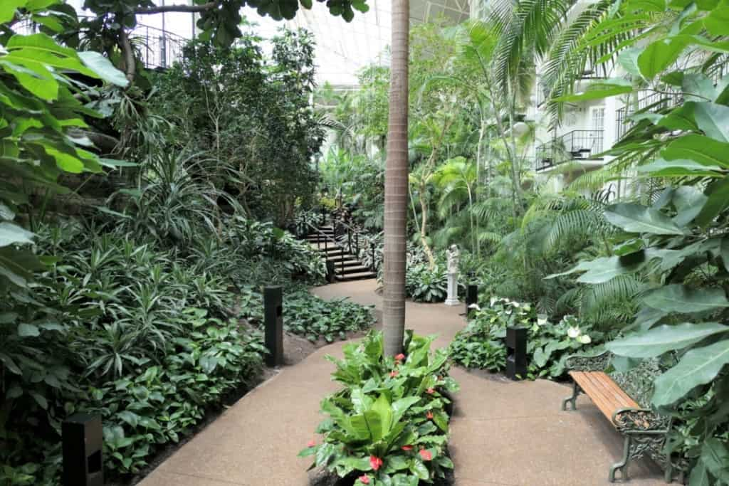 Walkways with a bench surrounded by plants in the Garden Conservatory in the Gaylord Opryland hotel.