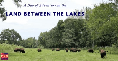 Land Between the Lakes: A Family Day of Adventure