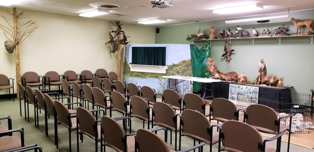 Classroom with chairs and taxidermy animals at the Nature Station in the Land between the Lakes