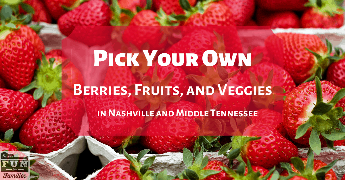 Pick Your Own Fruits and Vegetables in Middle Tennessee