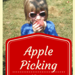 Apple Picking in Middle Tennessee