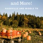 Pumpkin Farms, Corn Mazes, and More Pinterest Pin