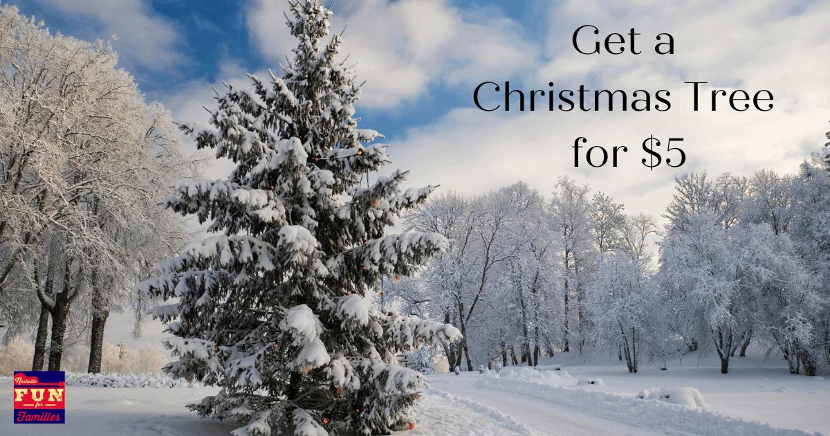 Get a $5 Christmas Tree